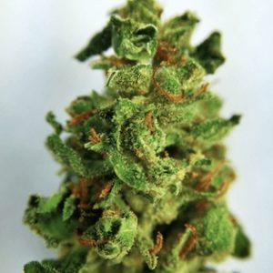Buy Diamond Valley Kush Online