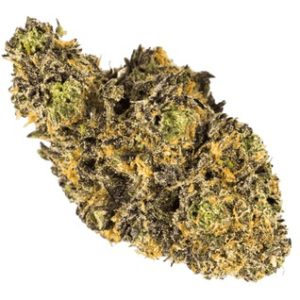 Buy Grand Daddy Purple Marijuana