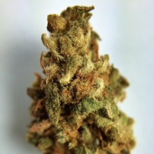 Buy Lucid Dream Marijuana