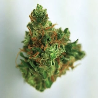 Buy White Widow Marijuana